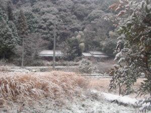 今朝は雪じゃ~!